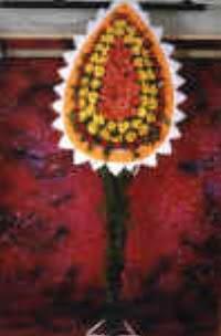 Van çiçek satışı  dügün açilis çiçekleri  Van çiçek , çiçekçi , çiçekçilik