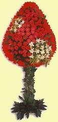 Van çiçek gönderme  dügün açilis çiçekleri  Van çiçek online çiçek siparişi