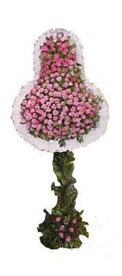 Van ucuz çiçek gönder  dügün açilis çiçekleri  Van internetten çiçek siparişi