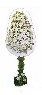 Van çiçek siparişi sitesi  nikah , dügün , açilis çiçek modeli  Van online çiçek gönderme sipariş