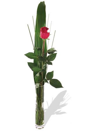 1 adet cam vazo içerisinde kirmizi gül  Van çiçek , çiçekçi , çiçekçilik