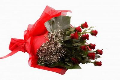 Van çiçek siparişi sitesi  11 adet kirmizi gül buketi çiçekçi