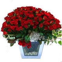 Van çiçekçiler   101 adet kirmizi gül aranjmani