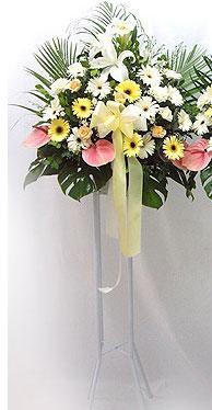 Van online çiçek gönderme sipariş   perförje çiçegi dügün çiçekleri