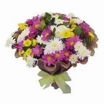 Van çiçekçi telefonları  Mevsim kir çiçegi demeti