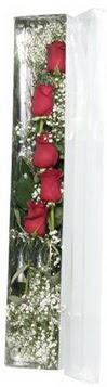 Van çiçek siparişi sitesi   5 adet gülden kutu güller