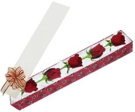Van internetten çiçek satışı  kutu içerisinde 5 adet kirmizi gül