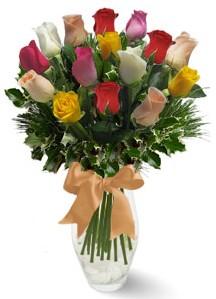15 adet vazoda renkli gül  Van internetten çiçek satışı