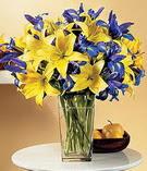 Van anneler günü çiçek yolla  Lilyum ve mevsim  çiçegi özel