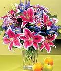 Van çiçek mağazası , çiçekçi adresleri  Sevgi bahçesi Özel  bir tercih