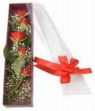 kutu içinde 5 adet kirmizi gül  Van internetten çiçek siparişi