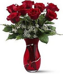 Vazo içinde 8 adet kirmizilar içinde güller  Van internetten çiçek siparişi