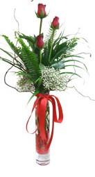 Van çiçek siparişi sitesi  3 adet kirmizi gül vazo içerisinde