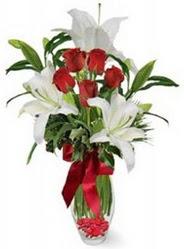 Van çiçek siparişi vermek  5 adet kirmizi gül ve 3 kandil kazablanka