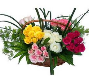 Van ucuz çiçek gönder  35 adet rengarenk güllerden sepet tanzimi