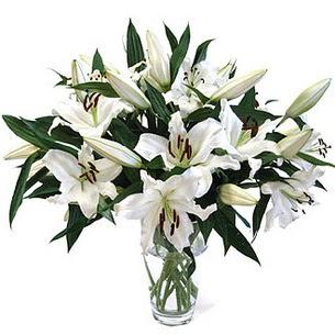 Van çiçekçi telefonları  3 dal görsel casablanca vazo tanzimi