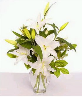 Van çiçek gönderme  2 dal cazablanca vazo çiçeği