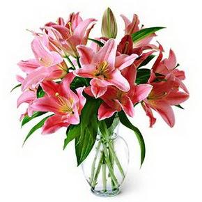 3 dal kazablanka görsel vazosu  Van internetten çiçek siparişi