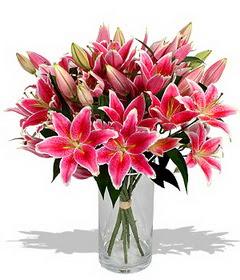 4 dal cazablanca görsel vazosu  Van çiçekçi mağazası