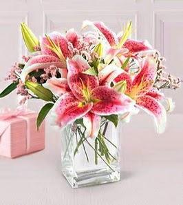 2 dal kazablanka görsel vazosu  Van çiçek siparişi sitesi
