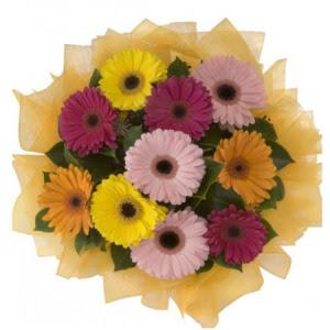 Van İnternetten çiçek siparişi  11 adet karışık gerbera çiçeği buketi