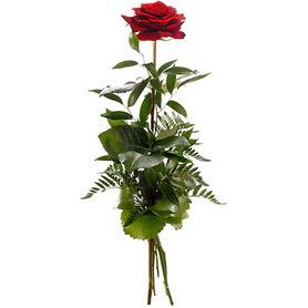 Van online çiçekçi , çiçek siparişi  1 adet kırmızı gülden buket