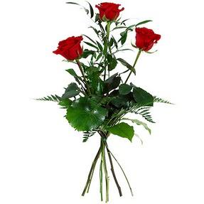 Van uluslararası çiçek gönderme  3 adet kırmızı gülden buket