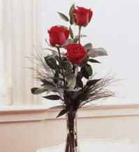 Van internetten çiçek satışı  Vazoda 3 adet güzel gül