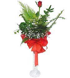 Van anneler günü çiçek yolla  Cam vazoda masum tek gül