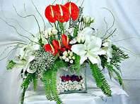 Van çiçek mağazası , çiçekçi adresleri  Anthurim Kazablanka  gül