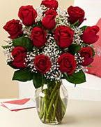 Sevgilime hediye 9 adet 1.ci kalite gül  Van anneler günü çiçek yolla