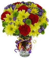 En güzel hediye karışık mevsim çiçeği  Van hediye çiçek yolla