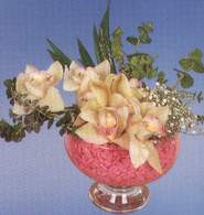 Van çiçek mağazası , çiçekçi adresleri  Dal orkide kalite bir hediye