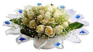Van çiçek online çiçek siparişi  11 adet Beyaz güller özel cam tanzim