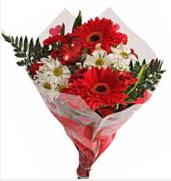 Mevsim çiçeklerinden görsel buket  Van çiçekçiler
