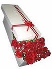 Van çiçekçi telefonları  11 adet 1.kalite magnum güller