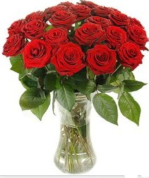 Van çiçek mağazası , çiçekçi adresleri  Vazoda 15 adet kırmızı gül tanzimi