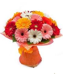 Renkli gerbera buketi  Van anneler günü çiçek yolla
