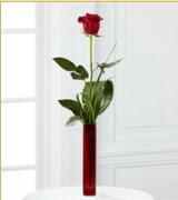 Vazo içerisinde 1 adet kırmızı gül  Van internetten çiçek siparişi