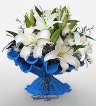 4 dal kazablanka çiçeğinden buket  Van cicek , cicekci
