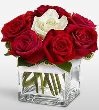Tek aşkımsın çiçeği 8 kırmızı 1 beyaz gül  Van uluslararası çiçek gönderme