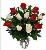 Vazo içerisinde 6 kırmızı 6 beyaz gül  Van hediye çiçek yolla