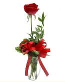 vazo içerisinde 1 adet kırmızı gül  Van çiçekçi telefonları