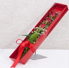 Kutu içerisinde 3 adet kırmızı gül  Van online çiçek gönderme sipariş