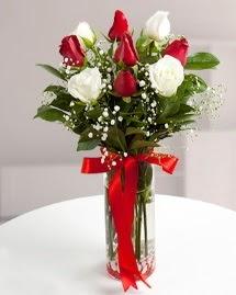 5 kırmızı 4 beyaz gül vazoda  Van cicekciler , cicek siparisi