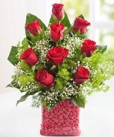 Cam içerisinde 9 adet kırmızı gül  Van internetten çiçek satışı