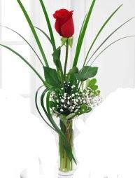 Cam içerisinde 1 kırmızı gül  Van çiçek gönderme sitemiz güvenlidir
