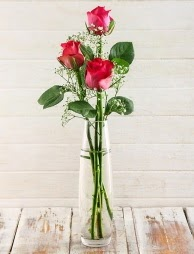 Cam içerisinde 3 kırmızı gül  Van çiçek satışı