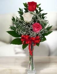 Camda 2 kırmızı 1 beyaz gül  Van ucuz çiçek gönder