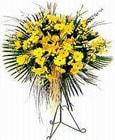 Van yurtiçi ve yurtdışı çiçek siparişi  Sari kazablanka Ferforje